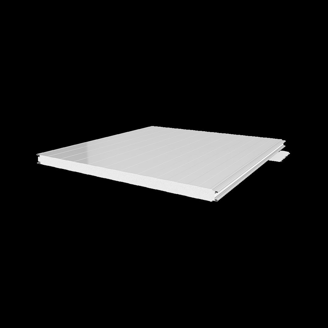 Soğuk Oda Tipi Sac-EPS-Sac Panel