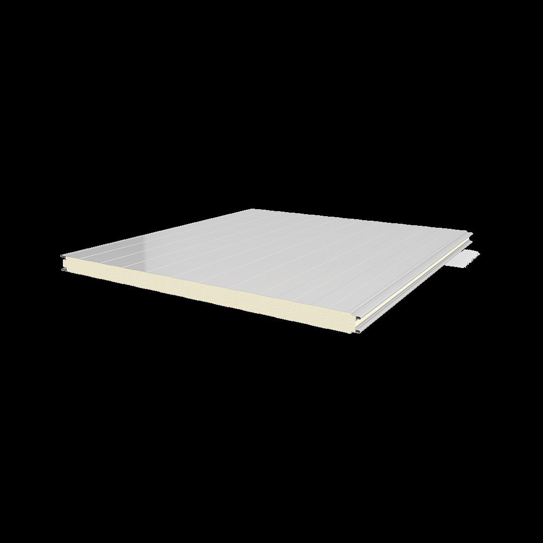 Soğuk Oda Tipi Sac-Poliüretan-Sac Panel